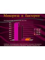 Микориза и микроорганизмы