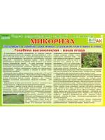 Интернет газета-Микориза